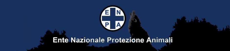 ENPA Novara Canile Rifugio