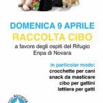 RACCOLTA PAPPA PRESSO ARCAPLANET