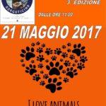Open Day Canile Sanitario Borgo Ticino: 21 maggio 2017