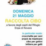 DOMENICA 21 MAGGIO:  RACCOLTA PAPPA PRESSO ARCAPLANET
