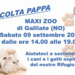 Sabato 9 Settembre Raccolta Pappa Galliate