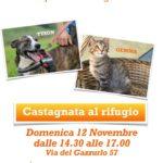 Domenica 12 Novembre Castagnata in Canile