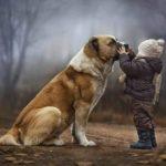Bambini e Cani