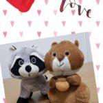Idee Solidali per San Valentino
